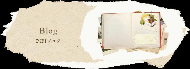 PiPiブログのページ